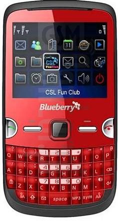 CSL BLUEBERRY 900 T