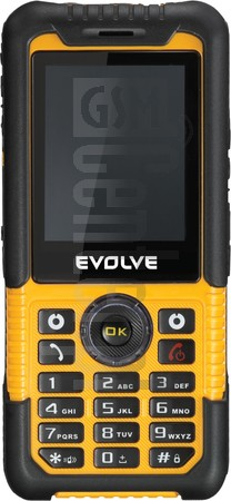 EVOLVE Survivor GX780