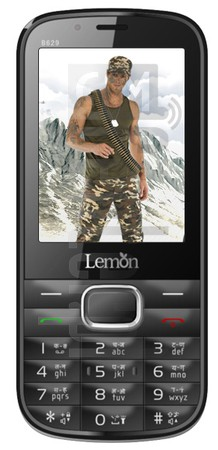 LEMON B629