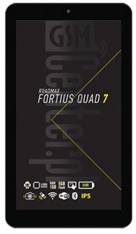 ROADMAX Fortius Quad 7