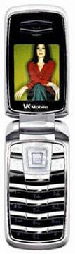 VK Mobile VG310