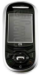 ZTE C6100